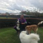 guarderia canina con transporte