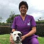 servicios generales guarderia canina